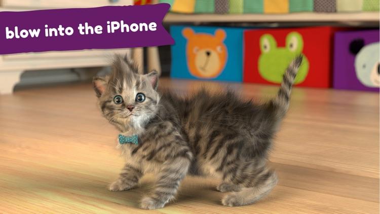 Little Kitten -My Favorite Cat screenshot-3