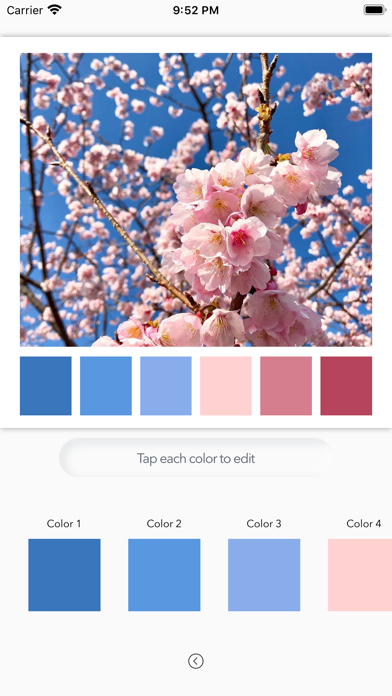 Color Tone Maker screenshot 2