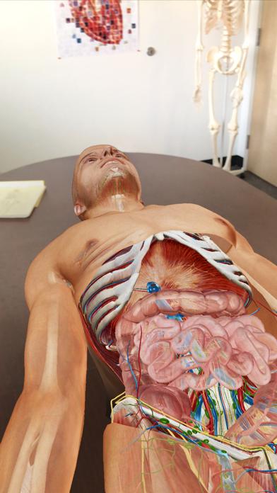 Atlas d'anatomie humaine 2020 sur pc