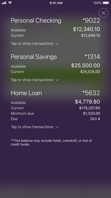 Bank5 Connect Mobile screenshot one