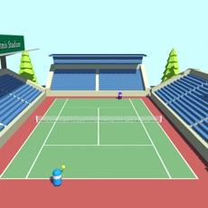 Activities of Dumpy Tennis