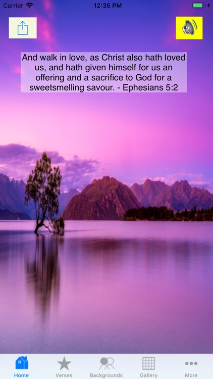 Lord's Verses