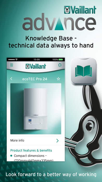 Vaillant Advance screenshot three