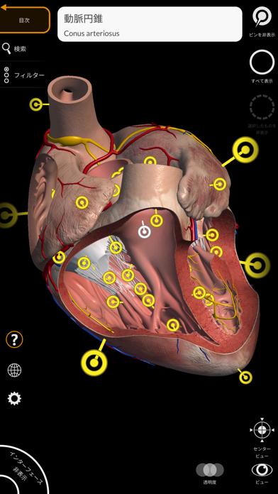 解剖学 - 3Dアトラス ScreenShot3