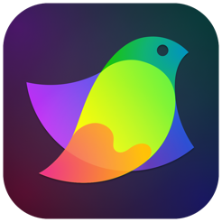 Amadine - Vector Graphics App
