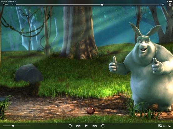 Infuse Pro 6 screenshot 14