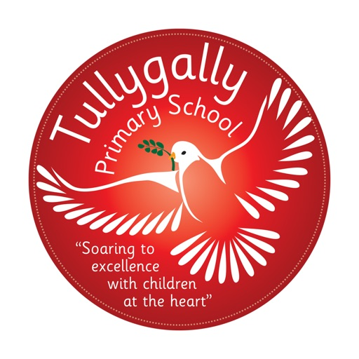 Tullygally PS