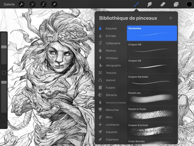 Procreate Capture d'écran
