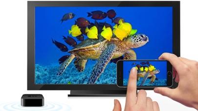 Aquarium 4K √のおすすめ画像1