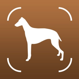 Dog Book: Breed Identifier