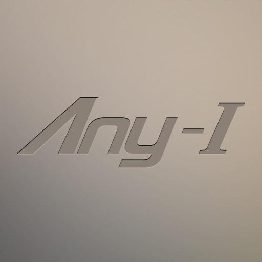 Any-I Consultant