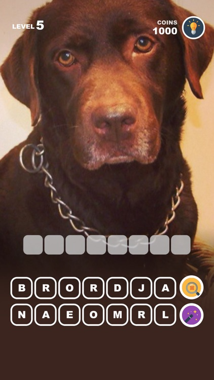 Dog Breed Training: Pet Trivia screenshot-5