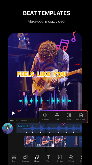 Tempo - Music Video Maker Screenshot