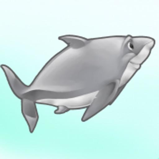 Word Shark - Build Vocabulary