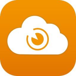 Archive-IT Virtual File