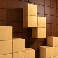 Wood Block - Ultimate Uinner