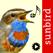 Fågelsång Id - fåglar