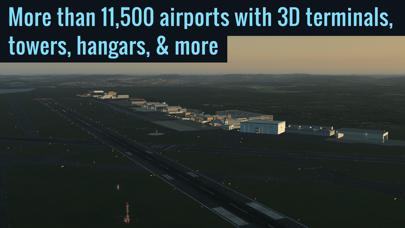 Screenshot from X-Plane Flight Simulator