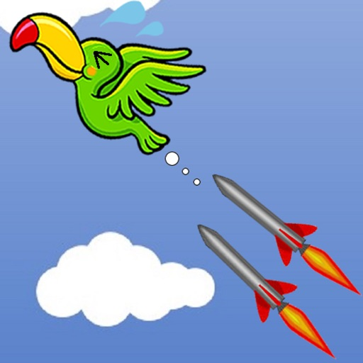 Birds and missiles
