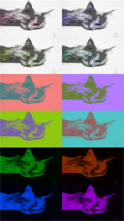 Art Serigraphy - Photo Editor