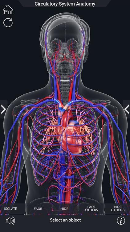 My Circulatory System Anatomy screenshot-3