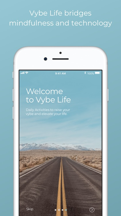 Vybe Life