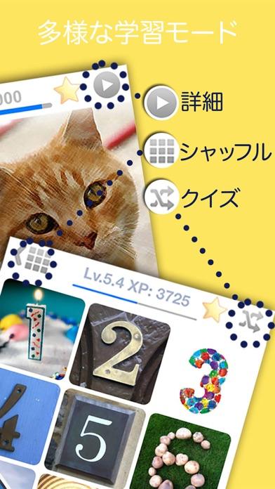 LingoCards 言語学習 - 英語、韓国語、単語のおすすめ画像2