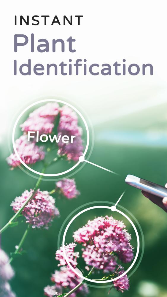 PlantSnap Plant Identification App for iPhone - Free