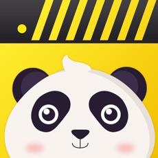 熊貓動態壁紙-高清手機主題壁紙大全