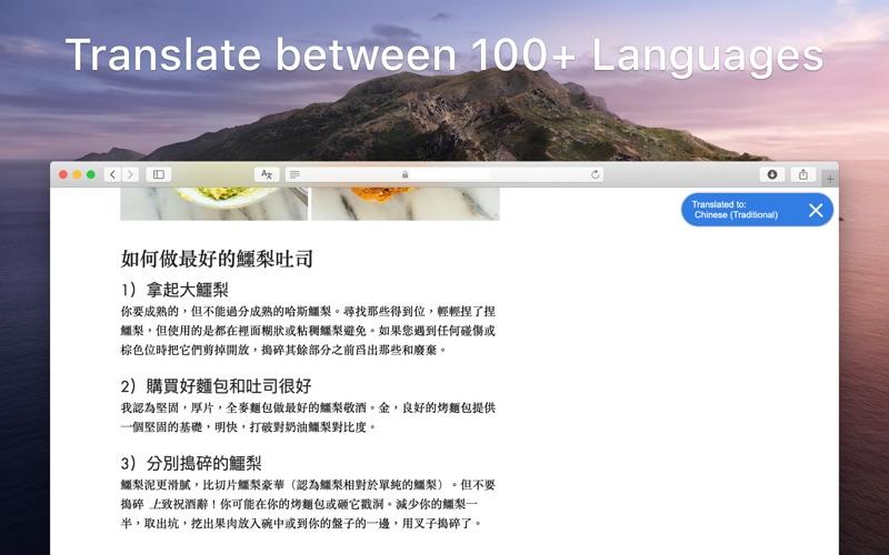 Tess - Website Translator for Mac