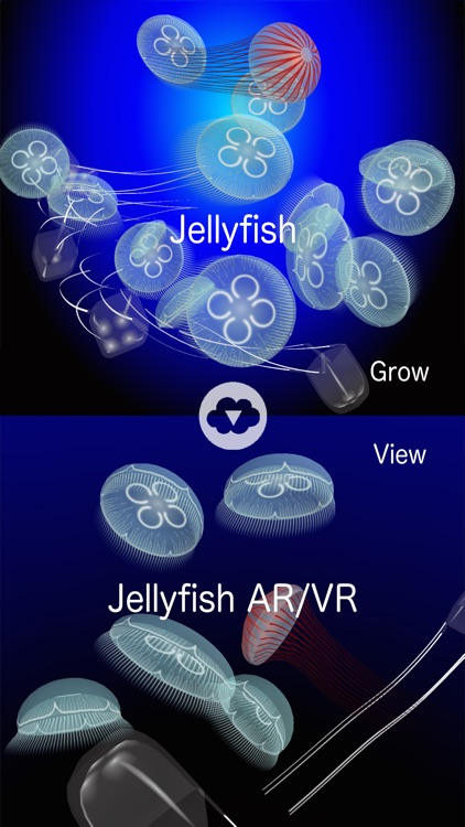 Jellyfish AR/VR screenshot-4