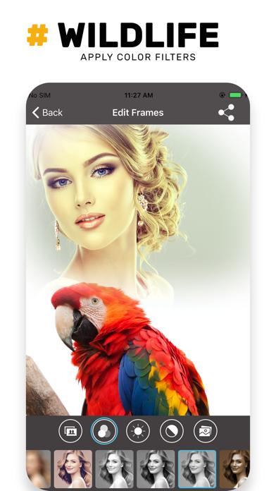 Wildlife Photo Frame Unlimited screenshot four