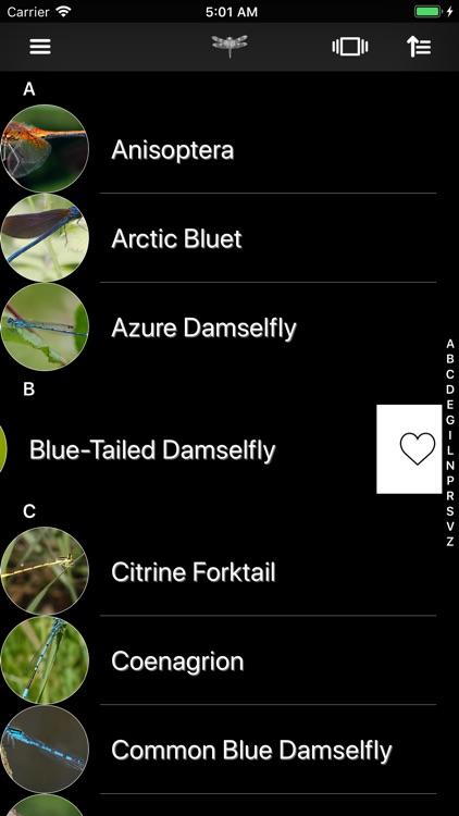 Dragonflies screenshot-5