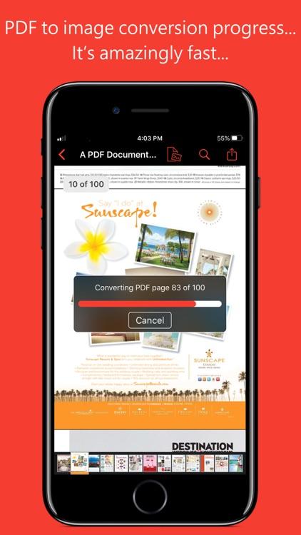 PDF to JPG for iOS