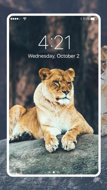 Fancy Wallpapers & Backgrounds screenshot-4