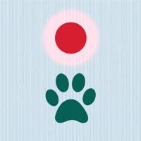 Codes for Cat Laser Game Hack