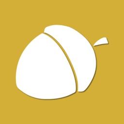 Acorn: Blogs in a nutshell