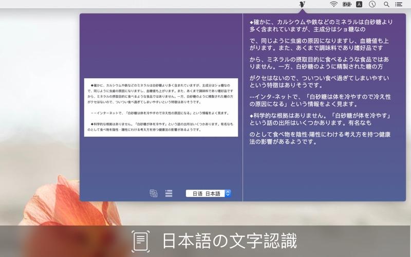 5_Text_Scanner_PDF_Document.jpg