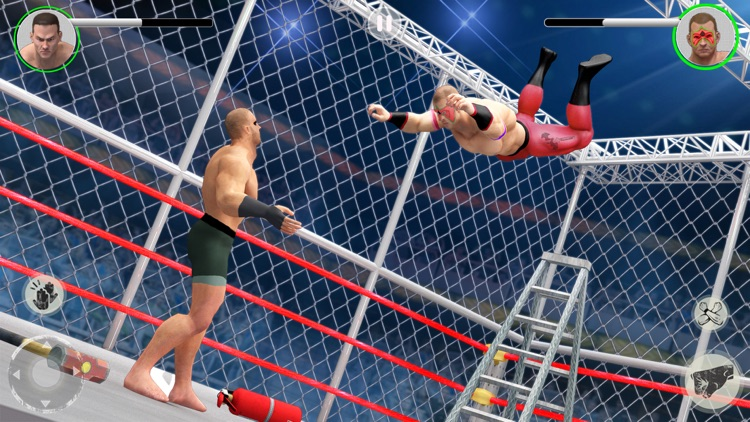 PRO Wrestling : Super Fight 3D screenshot-4