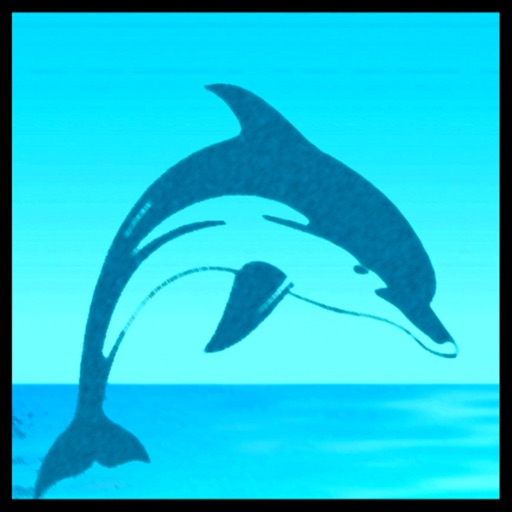 Meditation - Dolphins Whales icon
