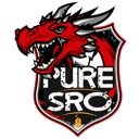 PureSRO – Private SRO Server