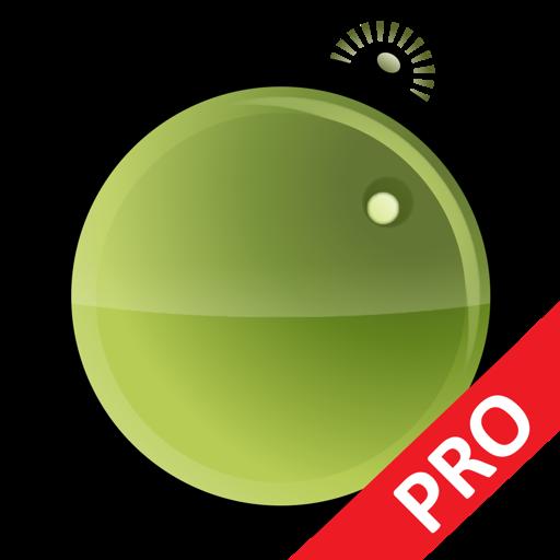 PhotoStage Professional
