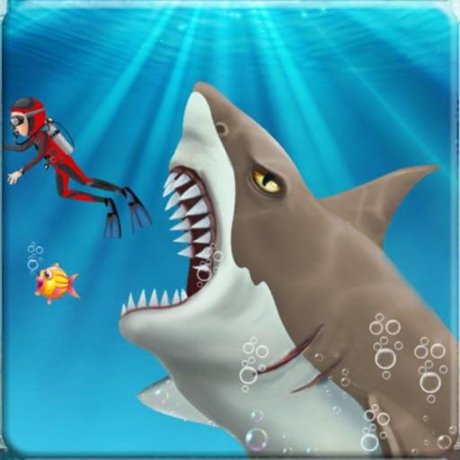 An Angry Shark Life