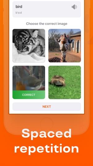 Reji – learn new words & vocab Screenshot