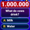 Millionär Quiz 2020