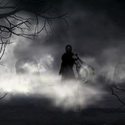 Shadow Runner Ninja