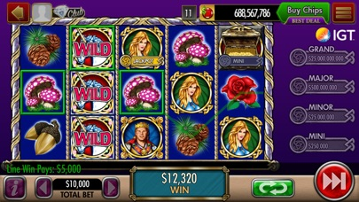 download DoubleDown Casino Slots Game
