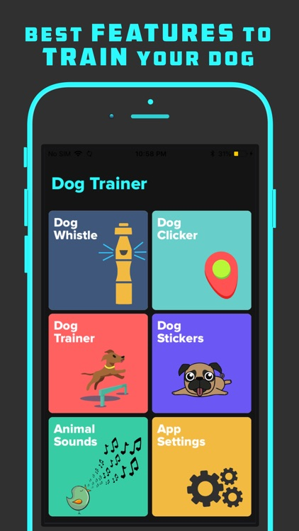 Dog Trainer with Whistle