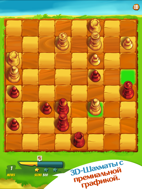 Шахматы ⁺ на iPad