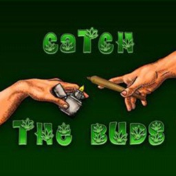Catch the Buds